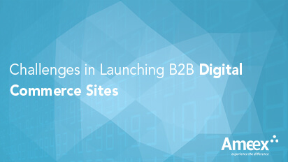 Challenges in launching B2B Digital commerce sites