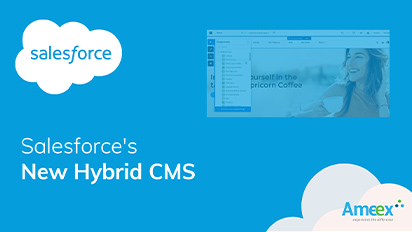 Salesforce Hybrid CMS Launch – Is it going to shake things up in the CMS space?