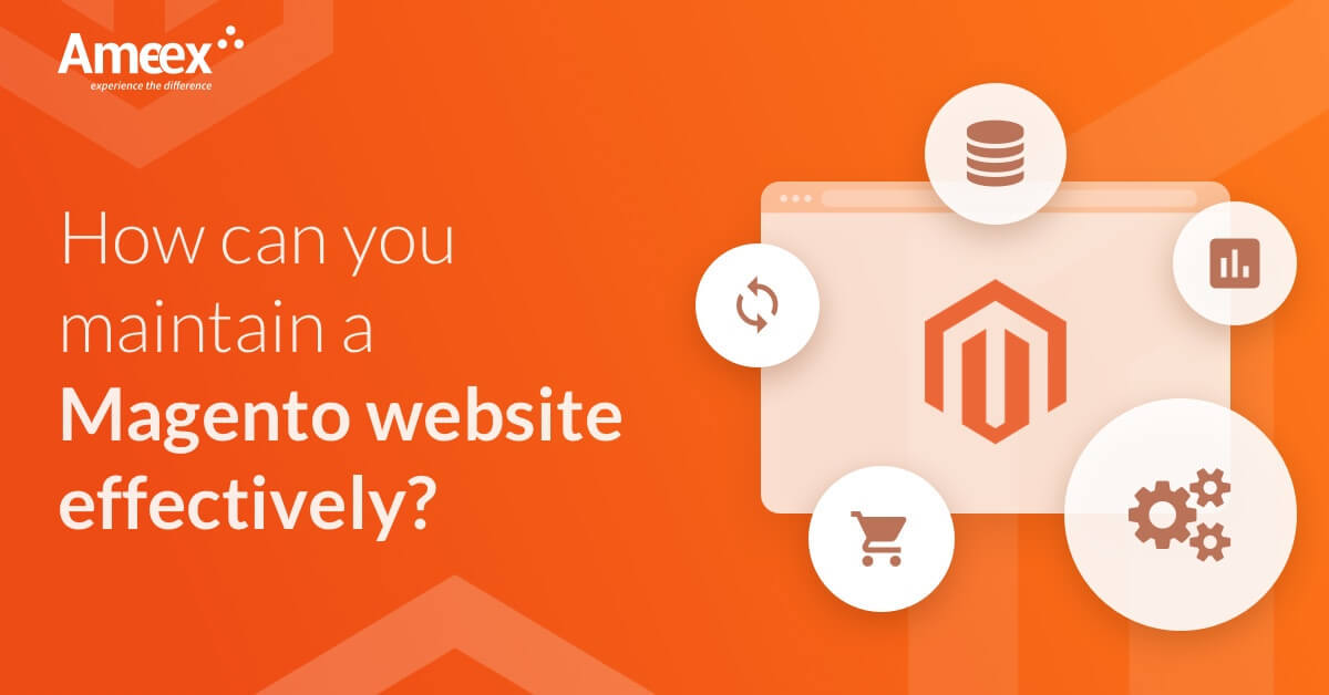 How can you maintain a Magento website effectively?